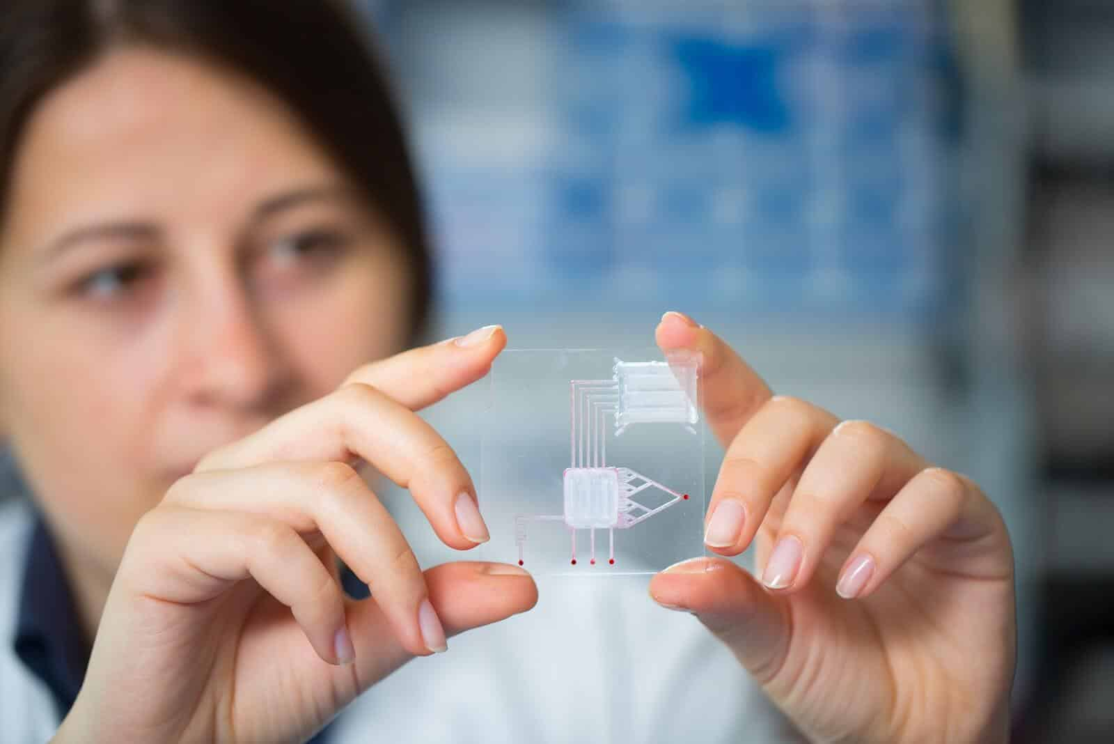 Growing Human Organs on a Computer Chip